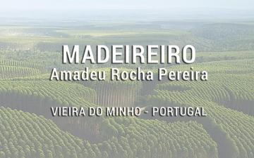 Madeireiro Amadeu Rocha Pereira